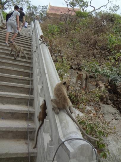 wejście na wzgórze - Prachuap