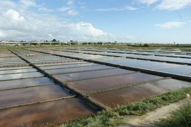 Aveiro - wydobywanie soli