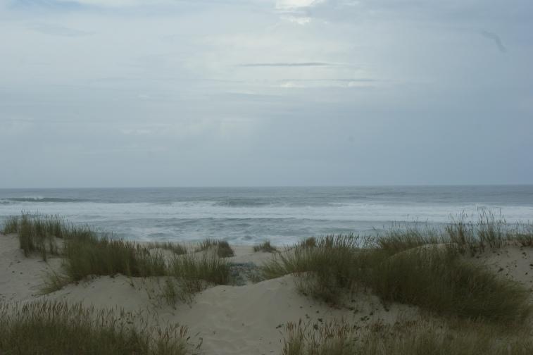 Reserva natural das dunas de são jacinto